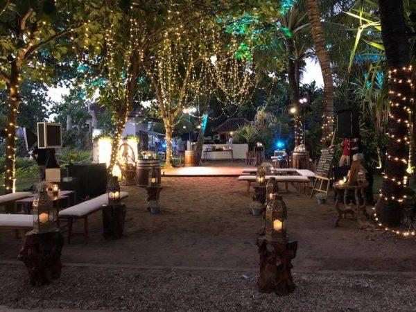 fairy lights in tree majoly