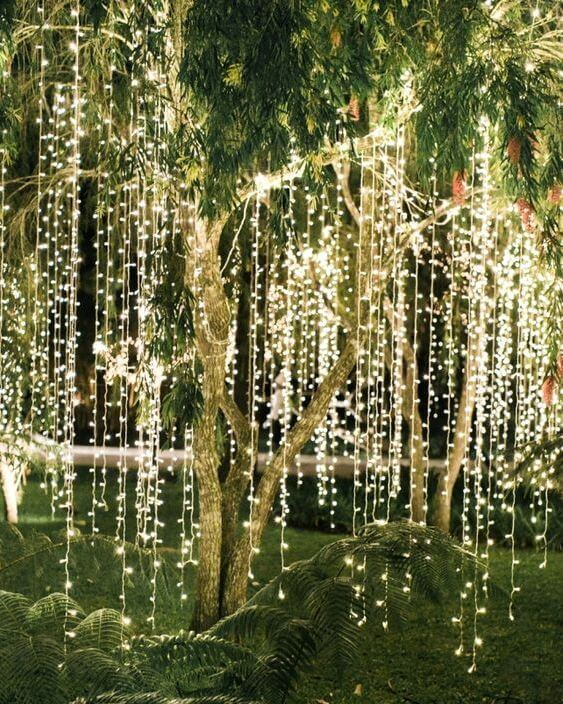 fariy lights in trees in bali